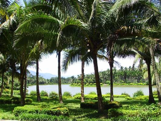 郑州出发到三亚旅游-海南三亚品质双飞五日游