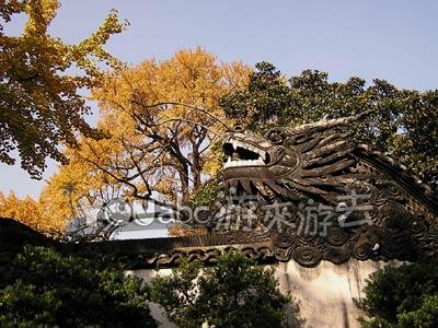 上海豫园的穿云龙墙