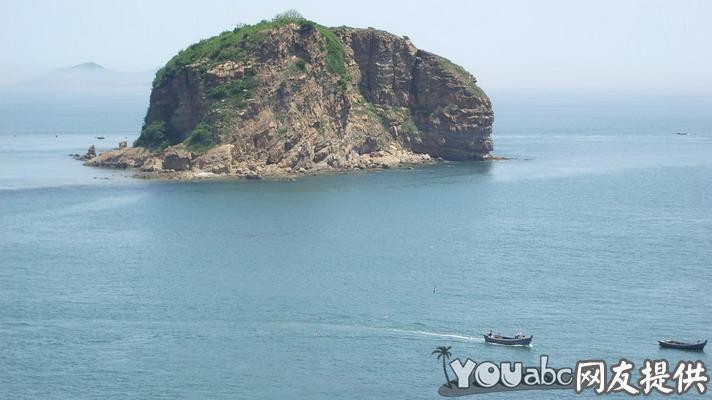 大连棒槌岛海参图片